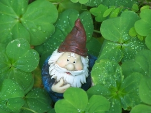 Underpants Gnome